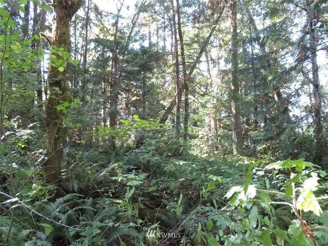 0 SE Burley Olalla Road, Olalla, WA 98359 (#1374973) :: Mike & Sandi Nelson Real Estate