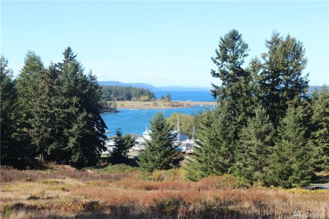 0 Normandy Lane, Lopez Island, WA 98261 (#1375002) :: Ben Kinney Real Estate Team