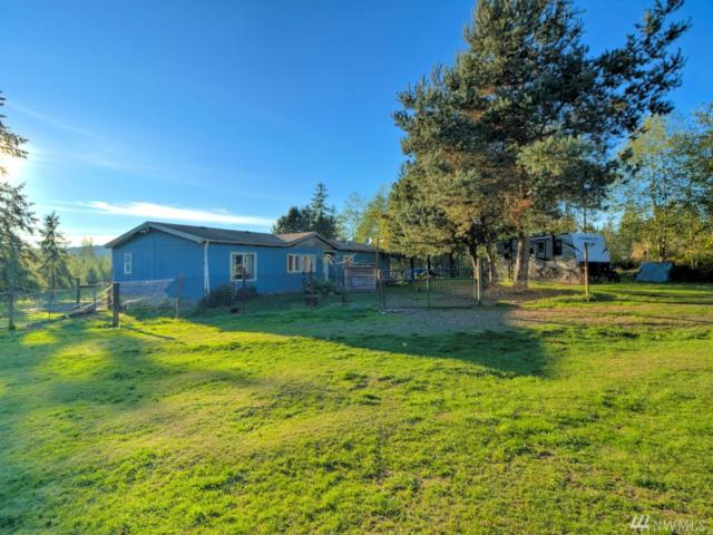 451 W Chucklebrook, Elma, WA 98541 (#1375097) :: Kwasi Bowie and Associates