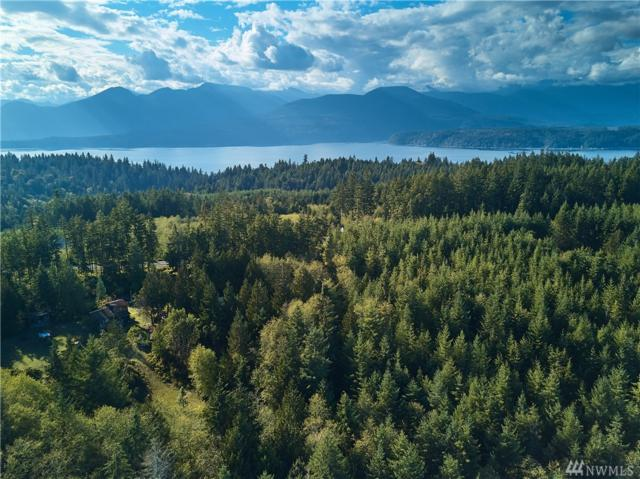 8455 Coyle Rd, Quilcene, WA 98376 (#1375277) :: Real Estate Solutions Group