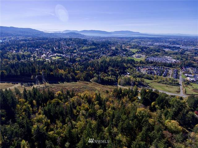0 Emerald Lake Way, Bellingham, WA 98229 (MLS #1375311) :: Community Real Estate Group