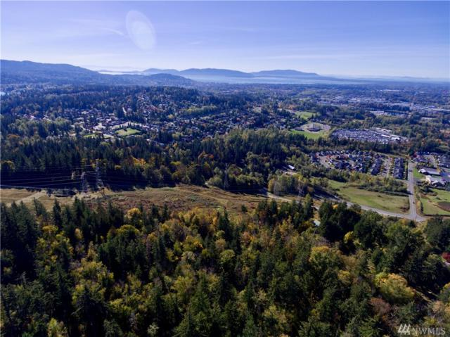 0--- Emerald Lake Wy, Bellingham, WA 98229 (#1375311) :: Ben Kinney Real Estate Team