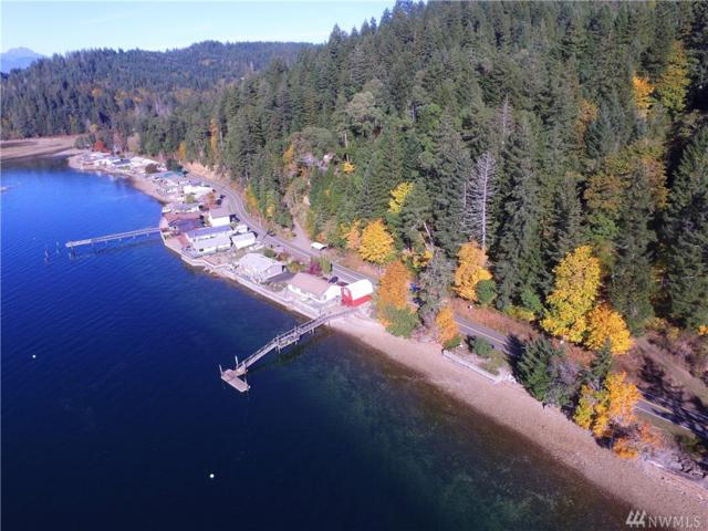 0-TR 18-23 NE North Shore Rd, Tahuya, WA 98588 (#1375361) :: Ben Kinney Real Estate Team