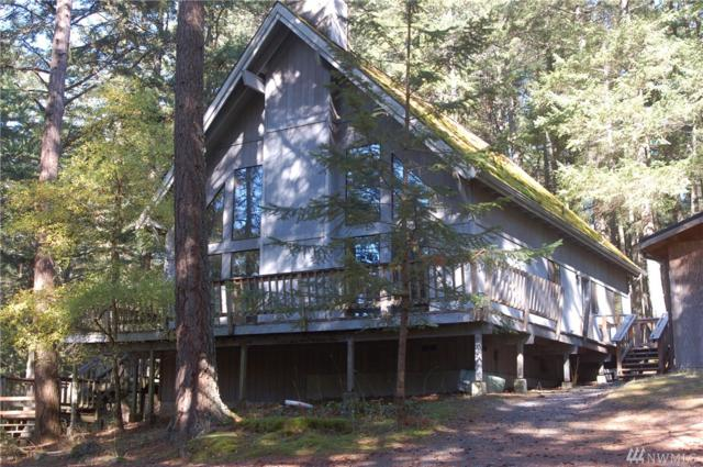 809 Discovery Way, Orcas Island, WA 98245 (#1375437) :: Real Estate Solutions Group