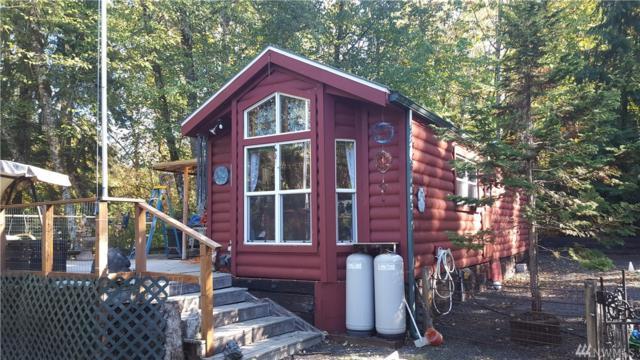 128 Lakeview Dr, Mossyrock, WA 98564 (#1375622) :: Alchemy Real Estate