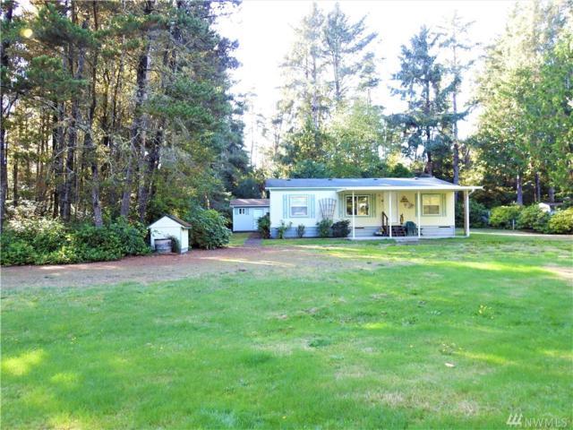 29915 L Lane, Ocean Park, WA 98640 (#1375932) :: Real Estate Solutions Group