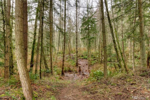 0 W Dry Lake Rd, Camano Island, WA 98282 (#1376078) :: Ben Kinney Real Estate Team