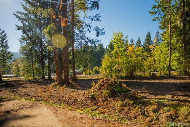 126 Bugle Lane, Packwood, WA 98361 (#1376268) :: Ben Kinney Real Estate Team