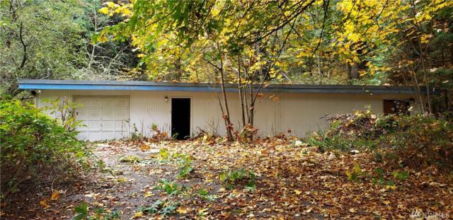 11-XX Mcrae Road Nw, Arlington, WA 98223 (#1376296) :: Ben Kinney Real Estate Team