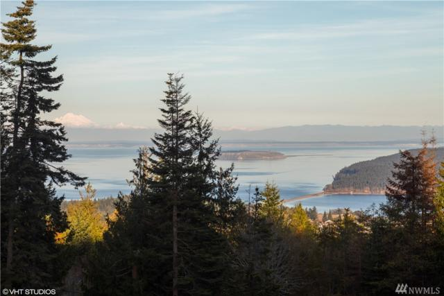 9999 Hawks Wy Lot 1, Sequim, WA 98382 (#1376406) :: Keller Williams Realty