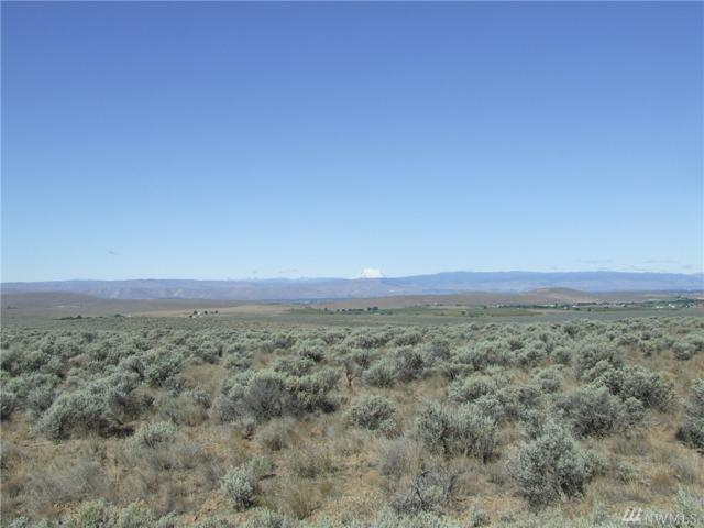 0-Lot 1 Sage Hills Dr, Ellensburg, WA 98926 (#1376477) :: Kimberly Gartland Group