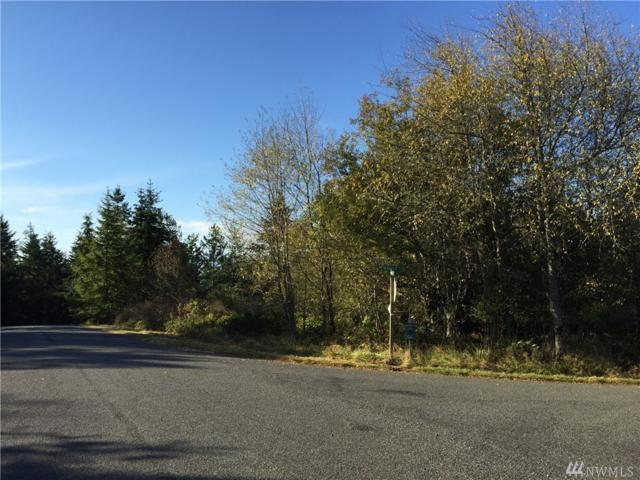 999 Myrtle Road Lot 15, Port Townsend, WA 98368 (#1376634) :: Real Estate Solutions Group