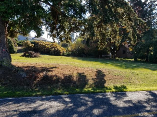 797 Ten Mile Rd, Lynden, WA 98264 (#1376656) :: Homes on the Sound