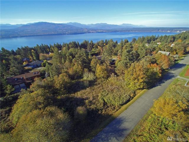 999 Myrtle Road Lot 17, Port Townsend, WA 98368 (#1376890) :: Real Estate Solutions Group