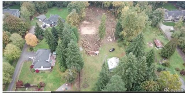 20300 166th Ave NE, Woodinville, WA 98072 (#1376927) :: Real Estate Solutions Group