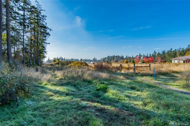 9999 Eighteenth St, Port Townsend, WA 98368 (#1377474) :: Icon Real Estate Group