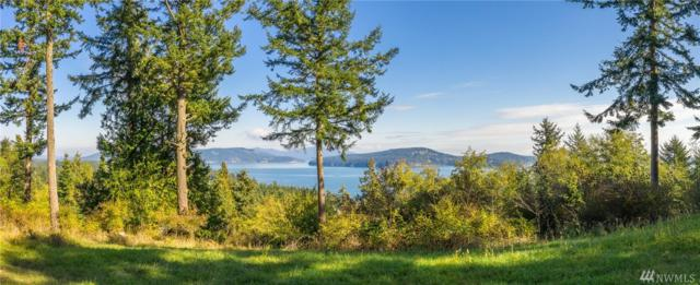 459 Suntides Lane, Lopez Island, WA 98261 (#1377482) :: KW North Seattle