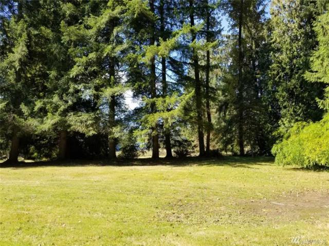 17210 Sr 92, Granite Falls, WA 98252 (#1377622) :: Five Doors Real Estate