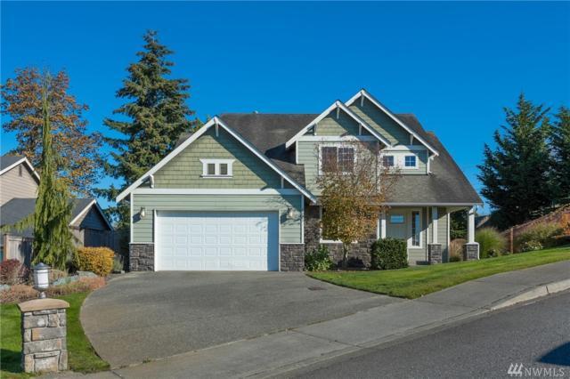 2723 River Vista Lp, Mount Vernon, WA 98273 (#1377723) :: Ben Kinney Real Estate Team