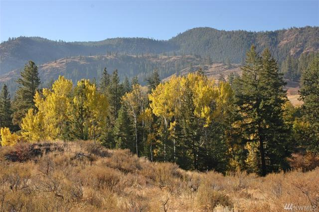 0-LOT 2 Alder Rd, Twisp, WA 98856 (#1377845) :: Keller Williams Western Realty