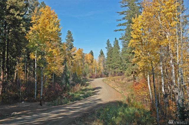 0-LOT 1 Alder Rd, Twisp, WA 98856 (#1377847) :: Keller Williams Western Realty