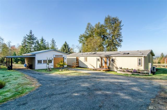 7055 Joy Rd, Everson, WA 98247 (#1378014) :: Real Estate Solutions Group