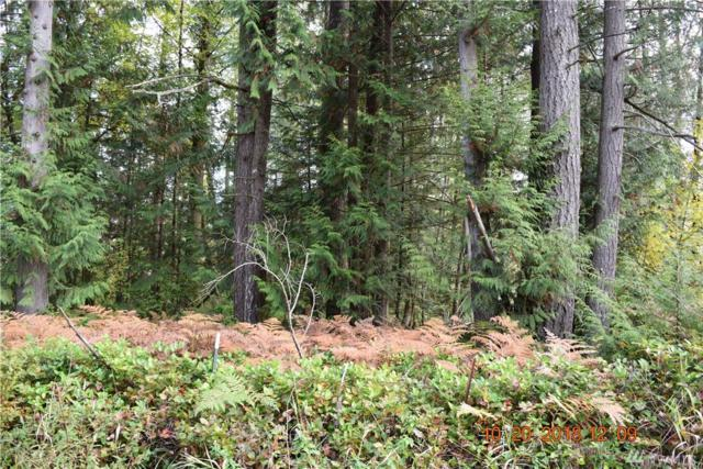 0-Lot 2 Logan Hill Rd, Chehalis, WA 98532 (#1378553) :: The Home Experience Group Powered by Keller Williams