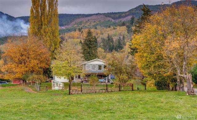 3730 Hopewell Rd, Everson, WA 98247 (#1378626) :: Real Estate Solutions Group