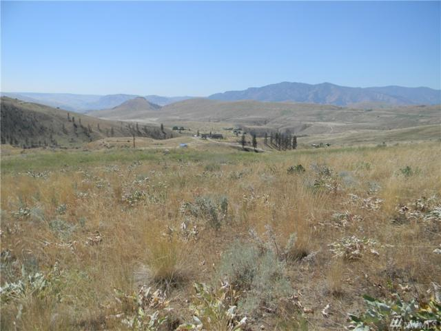 0 Harmony Heights Lot 19 West, Brewster, WA 98812 (#1378700) :: Icon Real Estate Group