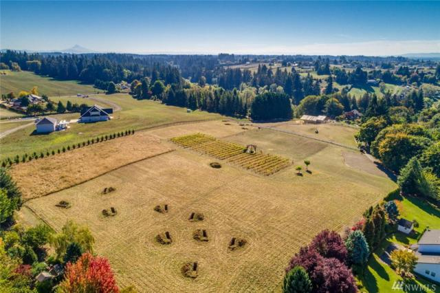19305 NW 67th Ave, Ridgefield, WA 98642 (#1378732) :: Kimberly Gartland Group