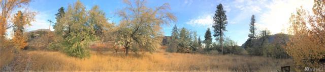 335 N End Omak Lake Rd, Omak, WA 98841 (#1378893) :: Homes on the Sound