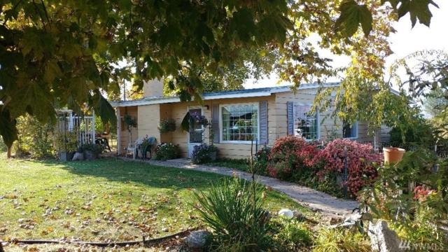 10 Demerchant Rd, Oroville, WA 98844 (#1379470) :: NW Home Experts