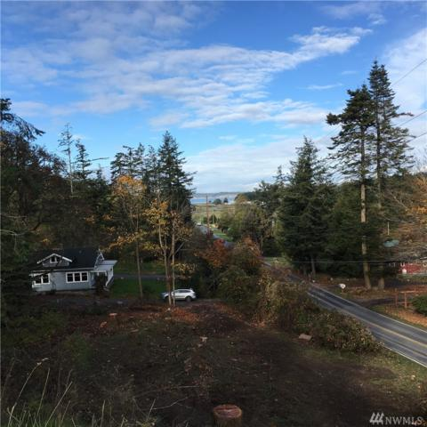 53 Wild Turkey Run, Orcas Island, WA 98245 (#1379749) :: Keller Williams Western Realty