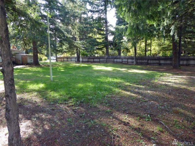 18925 Sargent Rd SW, Rochester, WA 98579 (#1380053) :: NW Home Experts