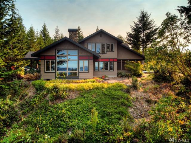 820 N Hamma Ridge Dr, Lilliwaup, WA 98555 (#1380097) :: Real Estate Solutions Group