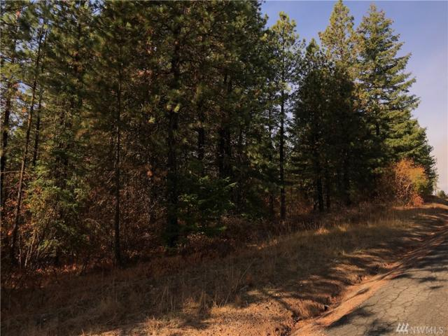 0-Lot C-1 Summit View Rd, Cle Elum, WA 98922 (#1380187) :: Alchemy Real Estate