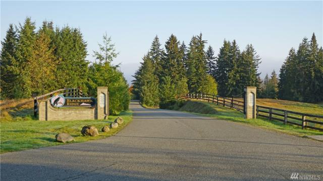 1351 Henry Boyd Rd, Port Angeles, WA 98362 (#1380316) :: The Kendra Todd Group at Keller Williams