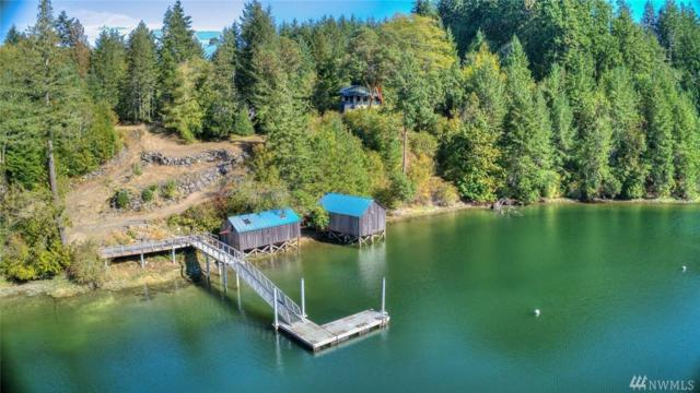 605 Eaton Rd, Quilcene, WA 98376 (#1380364) :: Canterwood Real Estate Team