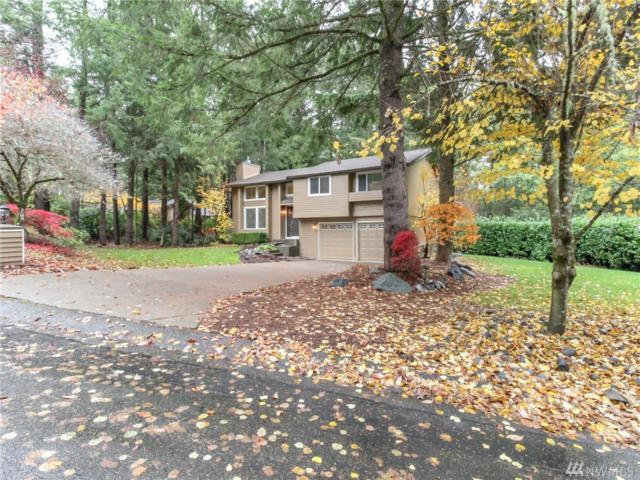12909 44th Av Ct NW, Gig Harbor, WA 98332 (#1380407) :: Canterwood Real Estate Team