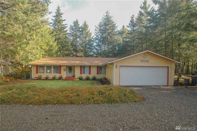 301 N Mountain View Dr, Hoodsport, WA 98548 (#1380496) :: Commencement Bay Brokers