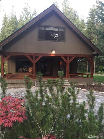 2630 Cottonwoood Lane, Leavenworth, WA 98826 (#1380591) :: Ben Kinney Real Estate Team