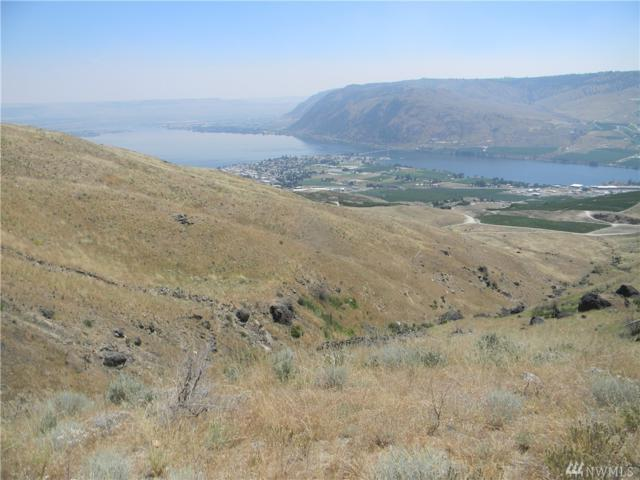 0 Harmony Heights Lot 80 North, Brewster, WA 98812 (#1380766) :: Icon Real Estate Group