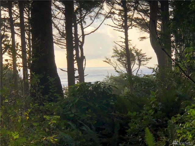 1-TR Ellis Lane, Copalis Beach, WA 98569 (#1381021) :: Kimberly Gartland Group