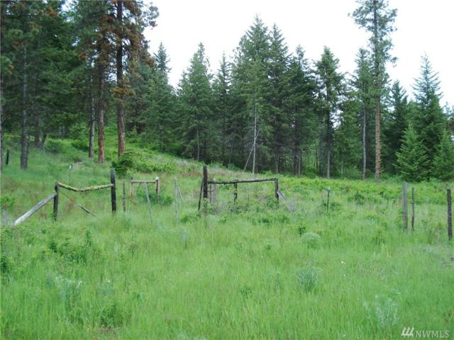 0-TBD Little Vulcan Rd, Curlew, WA 99118 (#1381116) :: Commencement Bay Brokers