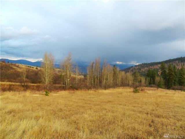 0-TBD Big Goosmus Rd, Curlew, WA 99118 (#1381208) :: Commencement Bay Brokers