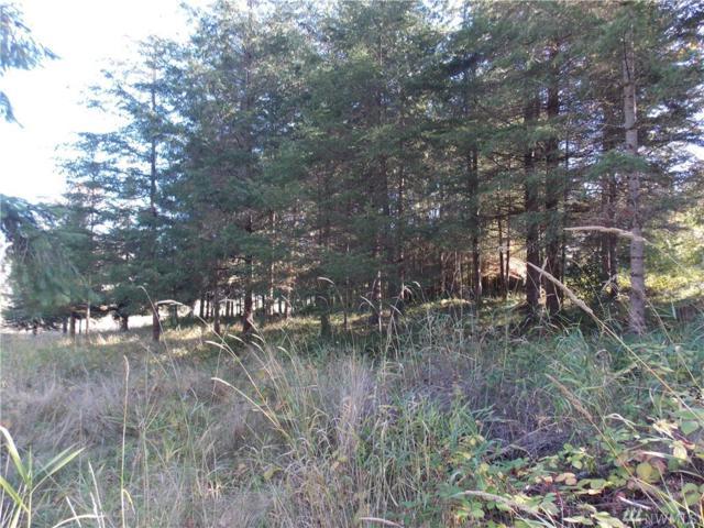 1006 Yakima St, Centralia, WA 98531 (#1381429) :: McAuley Real Estate