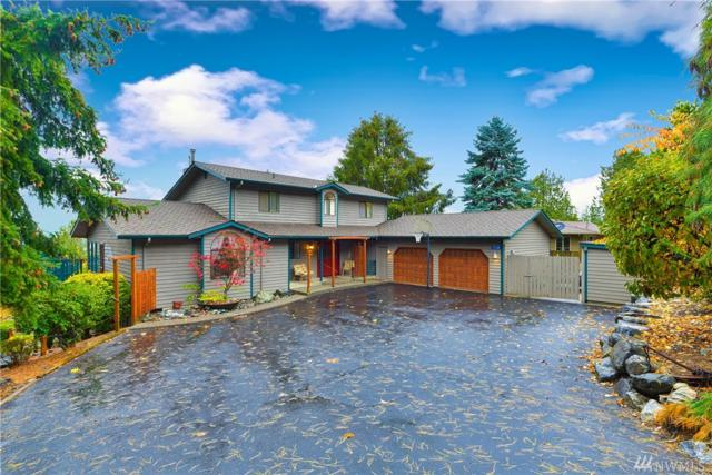 17338 Meadow Lane, Mount Vernon, WA 98274 (#1381472) :: Ben Kinney Real Estate Team