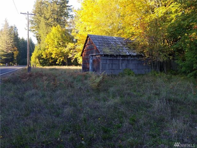 228 Sightly Rd, Toutle, WA 98649 (#1381550) :: Crutcher Dennis - My Puget Sound Homes