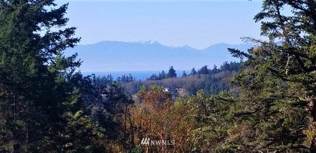 17 Prospect Road, San Juan Island, WA 98250 (#1381651) :: Costello Team
