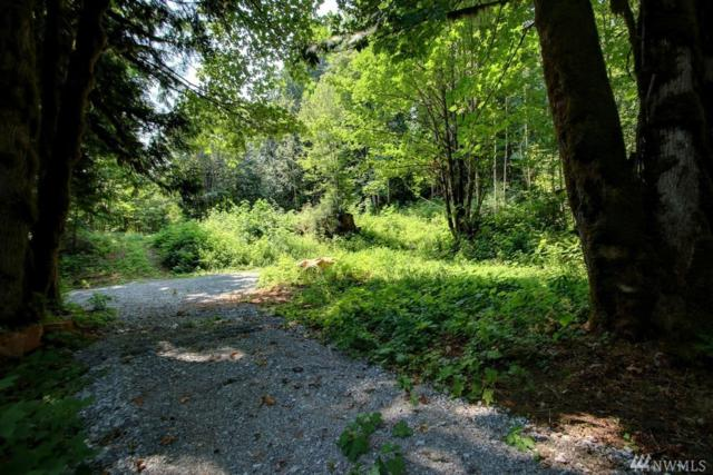 8553 Silver Lake Rd, Maple Falls, WA 98266 (#1381801) :: Commencement Bay Brokers
